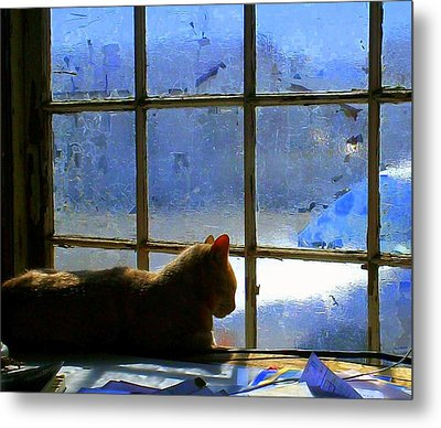 Cat In The Window Metal Print by Randall Weidner