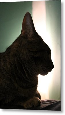 Cat Silhouette Metal Print by Nina Mirhabibi