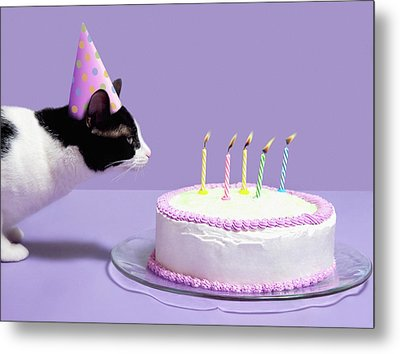 Cat Wearing Birthday Hat Blowing Out Candles On Birthday Cake Metal Print by Steven Puetzer