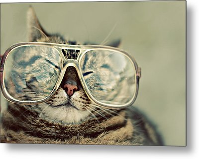 Cat With Glasses Metal Print by Sara Miedema