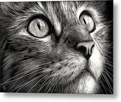 Cat's Face Metal Print by Elena Kolotusha