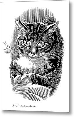 Cat's Whiskers, Conceptual Artwork Metal Print by Bill Sanderson
