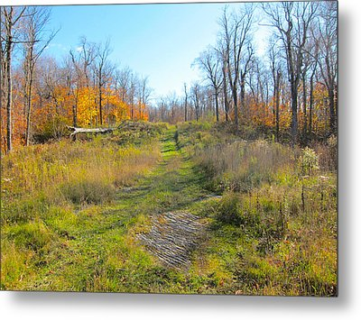 Catskill Ski Run In Late Autumn  Metal Print