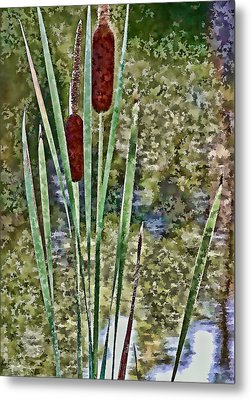 Metal Print featuring the photograph Cattails Along The Pond by Don Schwartz