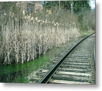 Cattails By The Tracks Metal Print