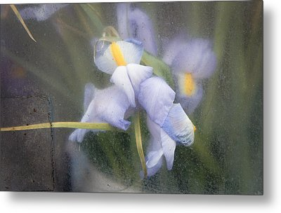 Caught And Waiting Metal Print by Lynn Wohlers