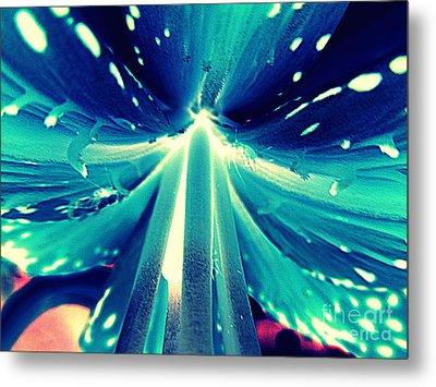 Celestial Radiance Metal Print by Renee Trenholm