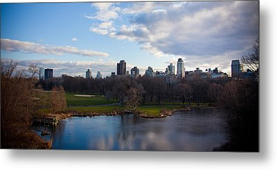 Central Park Metal Print by Steven Gray