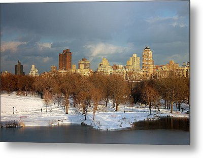 Central Park View Metal Print by Sarah McKoy