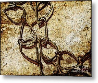 Chain Links Metal Print by Judi Bagwell