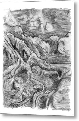 Charcoal Drawing Of Gnarled Pine Tree Roots In Swampy Area Metal Print