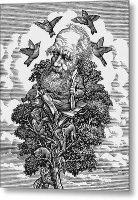 Charles Darwin In His Evolutionary Tree Metal Print by Bill Sanderson