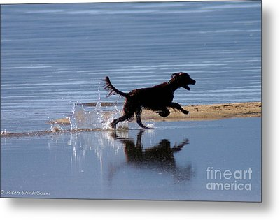 Metal Print featuring the photograph Chasing Reflections by Mitch Shindelbower