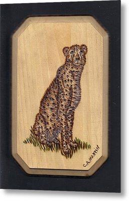 Cheetah Metal Print by Clarence Butch Martin