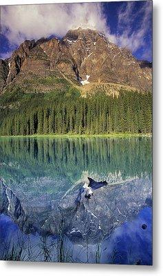 Chephren Lake And Mt. Chephren, Banff Metal Print by Darwin Wiggett