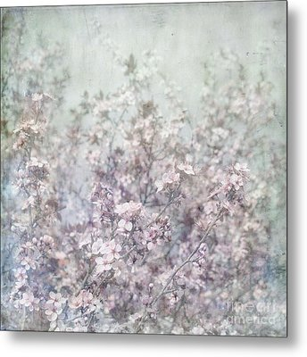 Cherry Blossom Grunge Metal Print by Paul Grand