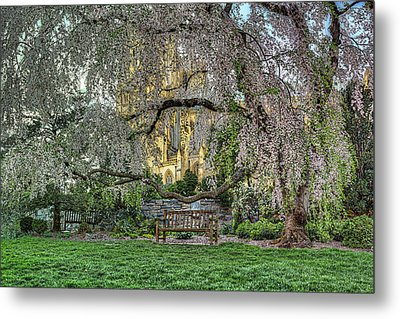 Cherry Blossoms At The Washington National Cathedral Metal Print