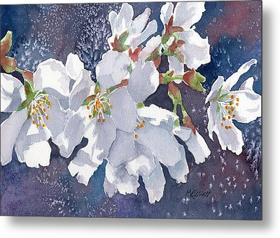 Cherry Blossoms Metal Print by Marsha Elliott