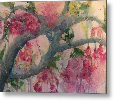 Cherry Blossoms Metal Print by Sandy Collier