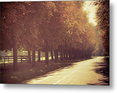 Chestnut Alley Metal Print by Susan Brooks-Dammann