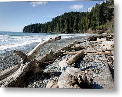 China Driftwood China Beach Juan De Fuca Provincial Park Bc Metal Print