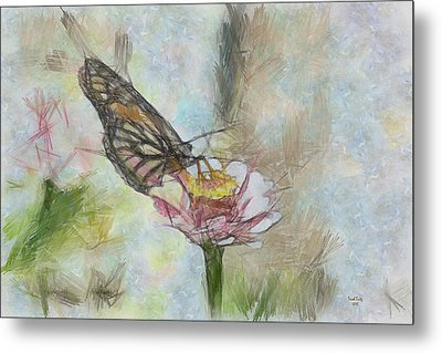 Chinese Butterfly Metal Print by Trish Tritz