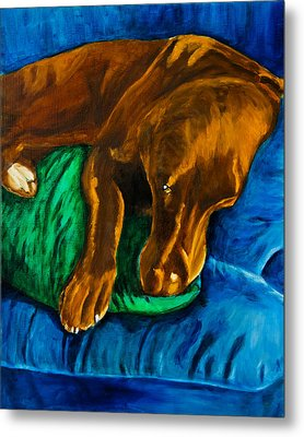 Chocolate Lab On Couch Metal Print by Roger Wedegis
