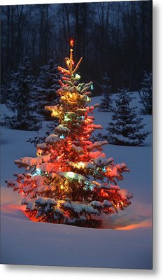 Christmas Tree With Lights Outdoors In Metal Print by Carson Ganci