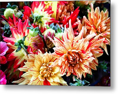 Chrysanthemum Blooms Metal Print by Tony Grider