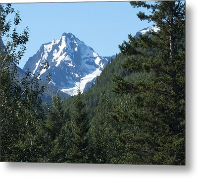 Chugach Mountain View Metal Print