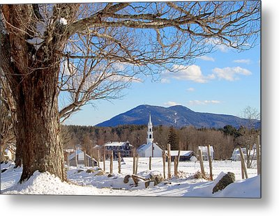 Classis Tamworth Trees Winter Metal Print