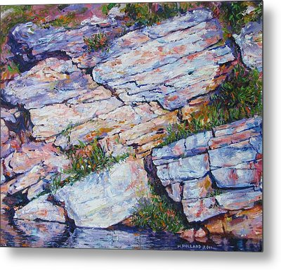 Cliff At Montlake Metal Print