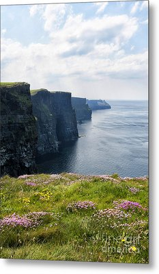 Cliffs Of Moher In Spring Metal Print
