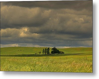 Metal Print featuring the photograph Clouds by Rima Biswas