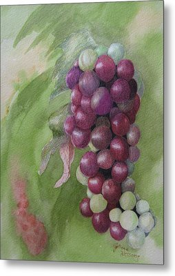 Cluster Of Grapes Metal Print by JoAnne Hessong