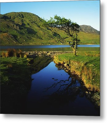 Co Galway, Kylemore Lough, Benbaun Metal Print by The Irish Image Collection