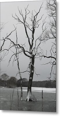 Coate2 Metal Print by Michael Standen Smith