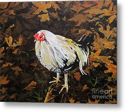 Cockerel Metal Print by Carrie Jackson