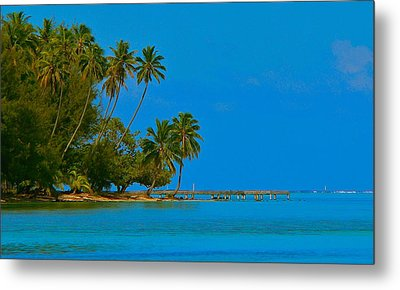 Metal Print featuring the photograph Coconuts Anyone by Eric Tressler
