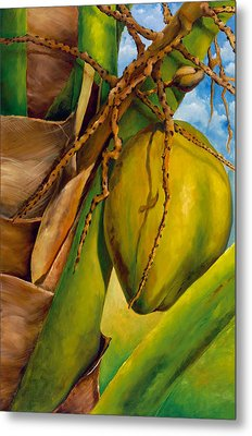 Coconuts Serie 2 Metal Print by Jose Romero