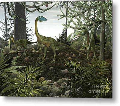 Coelophysis Dinosaurs Walk Amongst Metal Print by Walter Myers