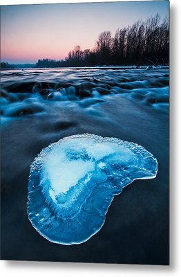 Cold Blue Metal Print by Davorin Mance