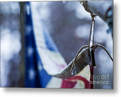 Cold Glory Metal Print by Sue OConnor