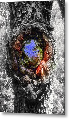 Metal Print featuring the photograph Color Genesis by Christine Ricker Brandt