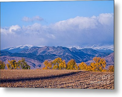 Colorado Autumn Morning Scenic View Metal Print by James BO  Insogna