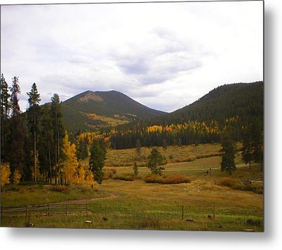 Colorado Trails In Autumn Metal Print