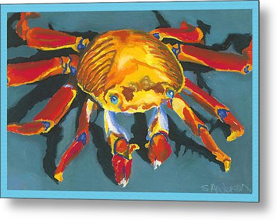 Colorful Crab With Border Metal Print by Stephen Anderson