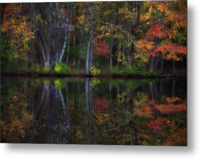 Colorful Forest Metal Print by Karol Livote