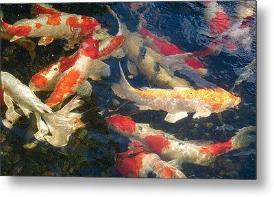 Metal Print featuring the photograph Colors by Dan Menta