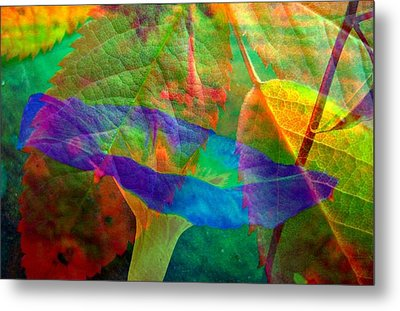 Colors Of Autumn Metal Print by Shirley Sirois